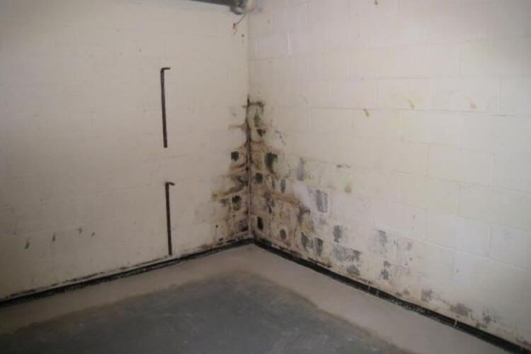 humedades en sótanos por condensación