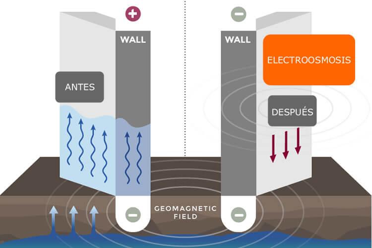 electroósmosismosis