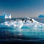 Hogar Seco apoya la sostenibilidad