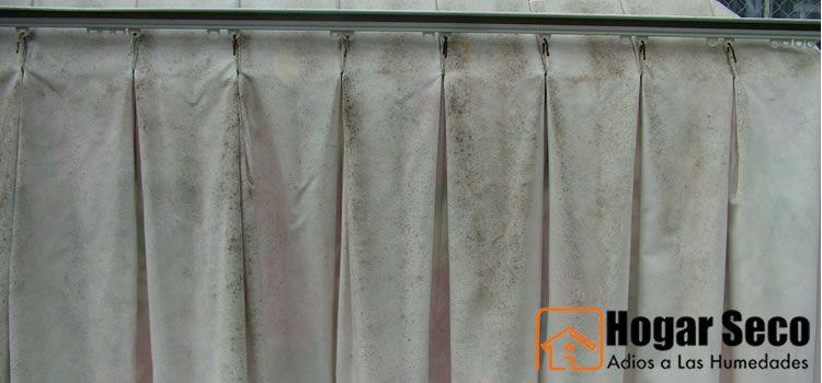 Blog de hogar seco informaci n sobre tipos de humedad - Limpiar moho cortinas bano ...